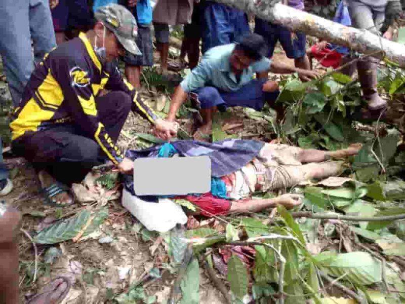 Herman Pakau (32) tewas tragis tertimpa pohon di dusun tomorron desa maindo kecamatan bastem utara kabupaten luwu, Rabu (30/10/2019)